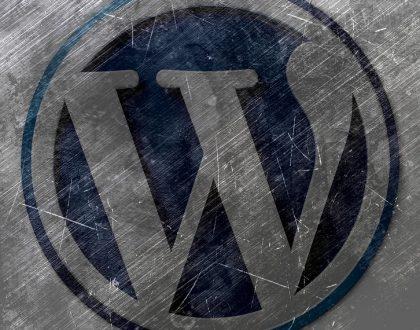 Wordpress Kategori ve Etiketler