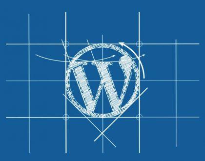 WordPress İçin En İyi Tema Seçimi