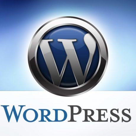 Wordpress SEO Sorunları