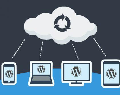 Wordpress Site Yedeği Alma Nasıl Yapılır?