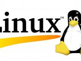 Linux Hosting Nedir? Linux Hosting'in En Önemli Özellikleri