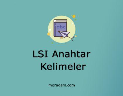 LSI Anahtar Kelimeler Nedir? Nasıl Kullanılır? LSI Anahtar Kelime Rehberi