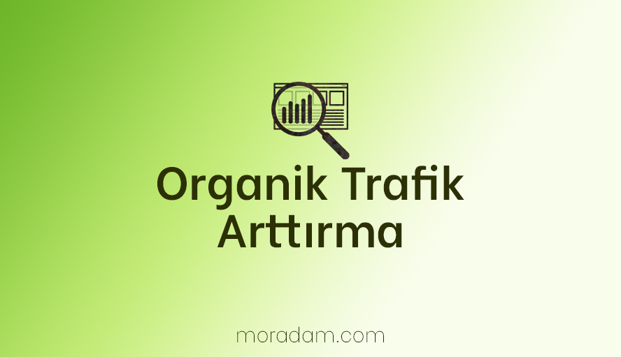 Organik Trafik Arttırma