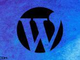 WordPress Sayfa, Yazı, Kategori, Etiket ID Bulma