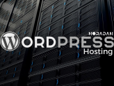 WordPress Hosting Nedir?