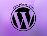 WordPress Sitenizdeki HTTP İstekleri